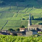 ブルゴーニュワインとは?押さえておきたい産地や味の特徴!